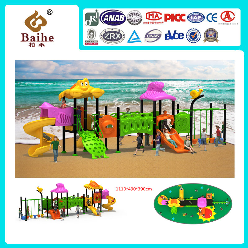 Playground Equipment BH008