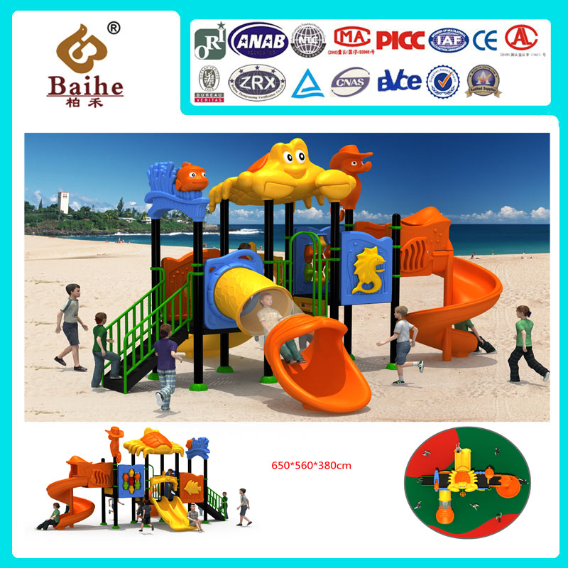 Playground Equipment BH011