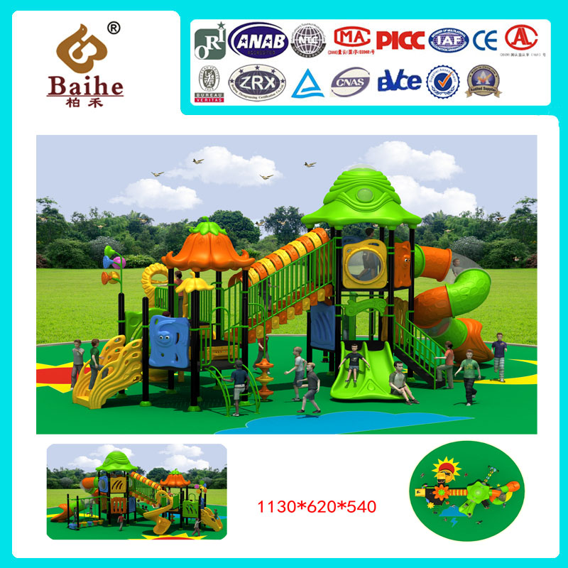 Playground Equipment BH021