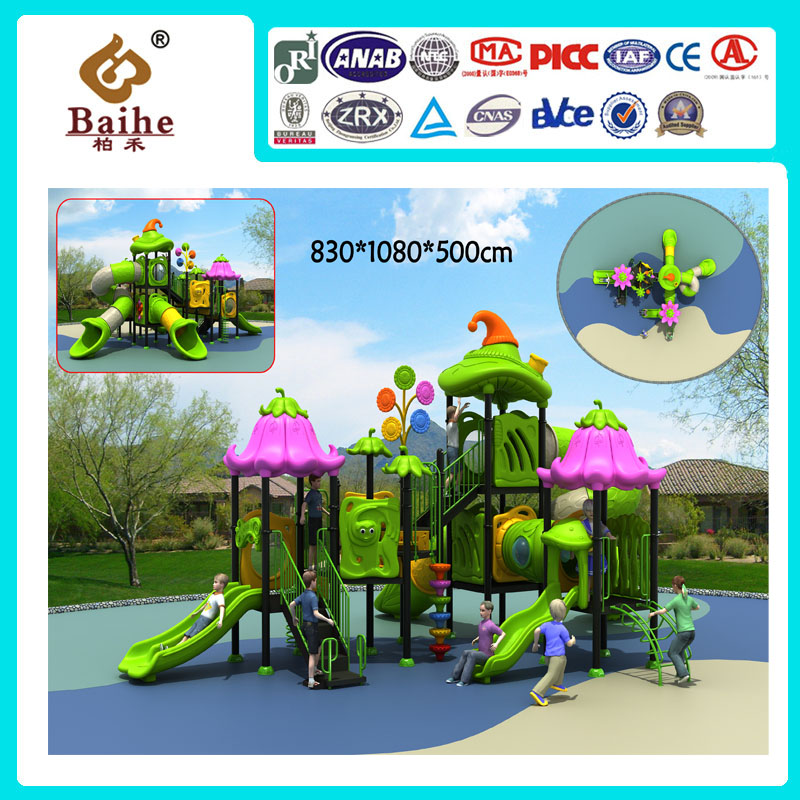 Playground Equipment BH024