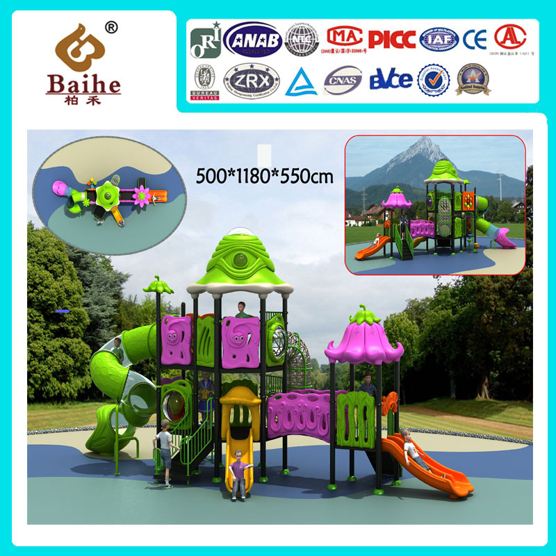Playground Equipment BH023