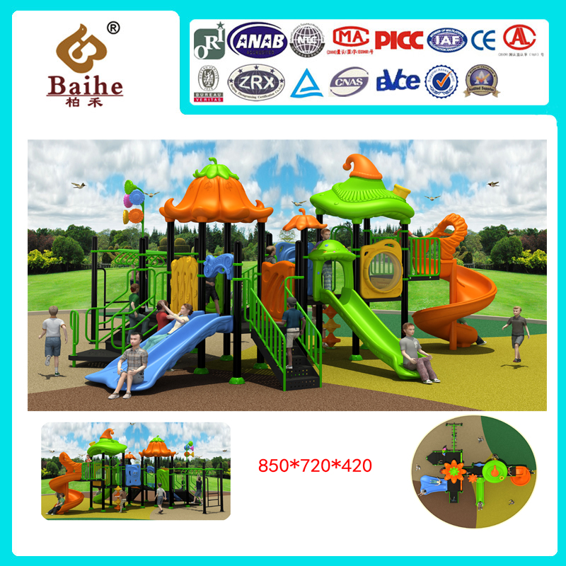 Playground Equipment BH036